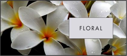 Floral là một trong những họ hương mang nhiều màu sắc dịu dàng, nữ tính